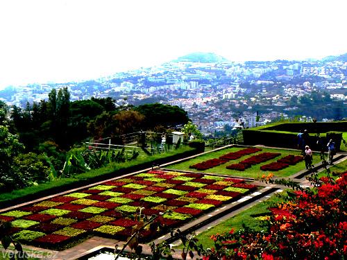 Výhled z botanické zahrady na Funchal