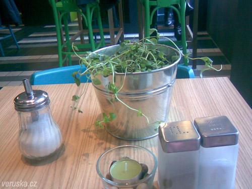 Starsano - bylinky na stole